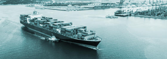 Tron Global (Private) Ltd - Freight Forwarding and Customs